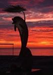Batumi Dolphin